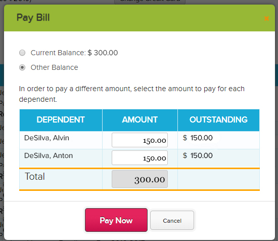 Pay_Bill_-_Other_Balance_new.jpg